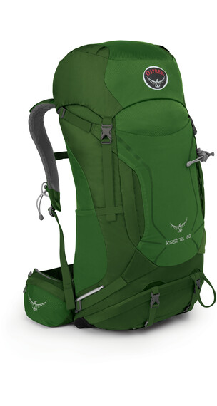 Osprey M's Kestrel 38 Backpack Jungle Green